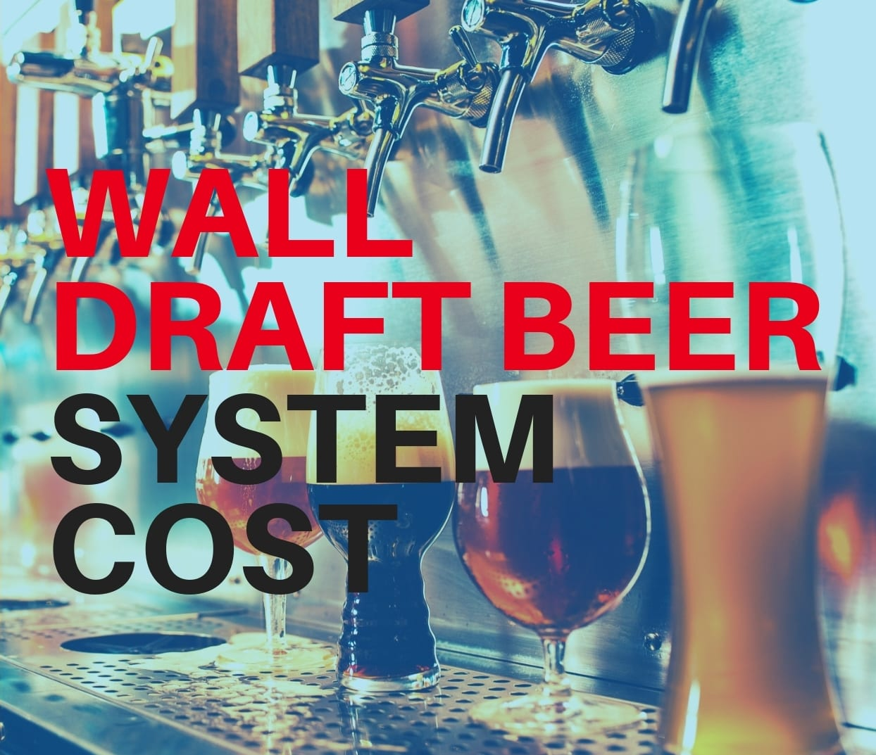 BEER-WALL-SYSTEM-COST-TN